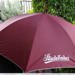 umbrella-a