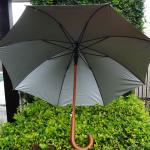 umbrella-b
